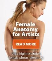 Female Anatomy